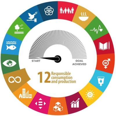 SDG-Meter